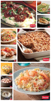 Follow Success Rice on Pinterest
